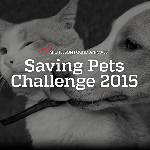 Saving Pets Challenge