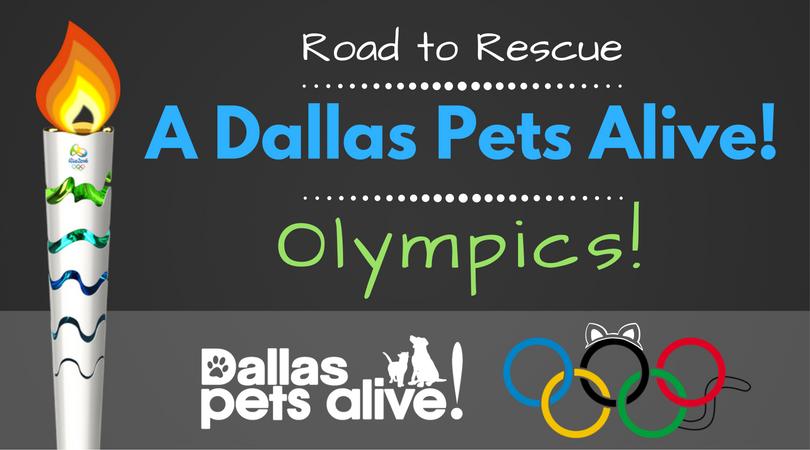 Road to Rescue: A Dallas Pets Alive! Olympics