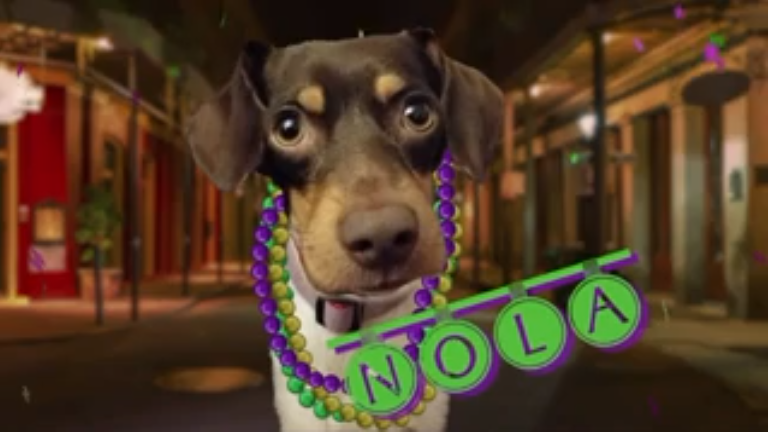 Ruff Life: Now NOLA can let the good times roll!