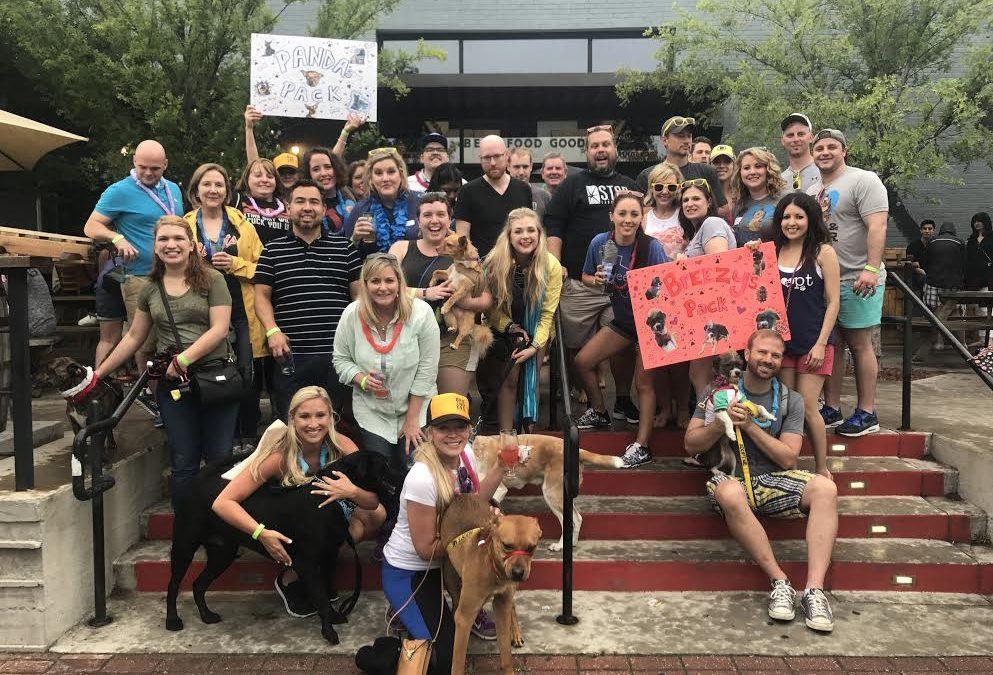 Recap: DPA's 5th Annual Pup Crawl in Deep Ellum