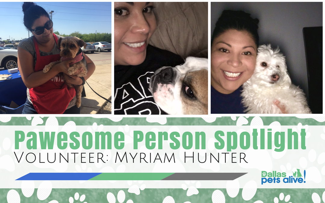 DPA's Pawesome Person Spotlight: October Volunteer Spotlight