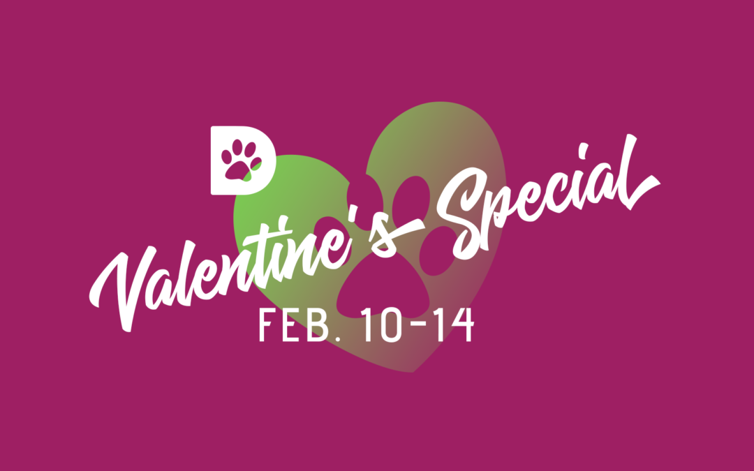 Valentine's Day Adoption Special February 10-14, 2018
