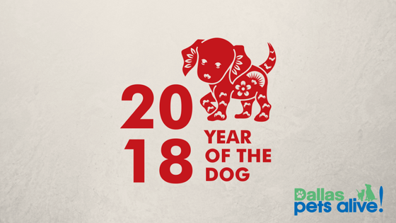 2018 – The Year of the Dog and What that Means for You!