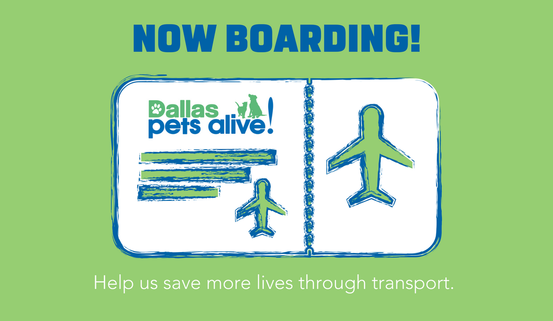 NOW BOARDING: Dallas Pets Alive! Transport Fundraiser