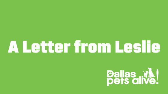 A Letter from Our Executive Director Leslie Sans