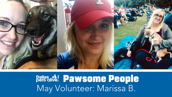 DPA's Pawsome Person: May Volunteer Spotlight