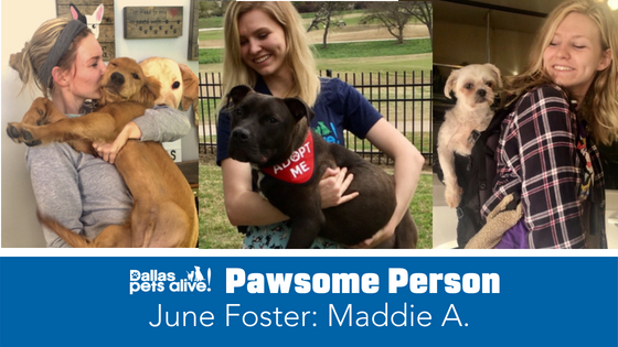 DPA's Pawsome People: June Foster Spotlight