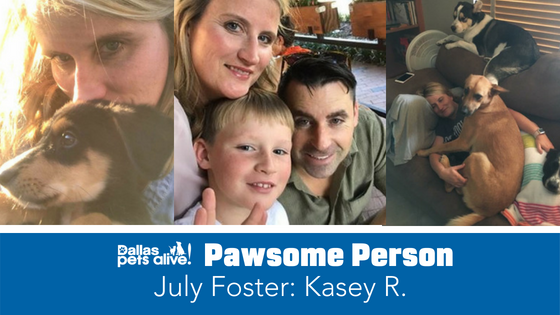DPA's Pawsome People: July 2018 Foster Spotlight