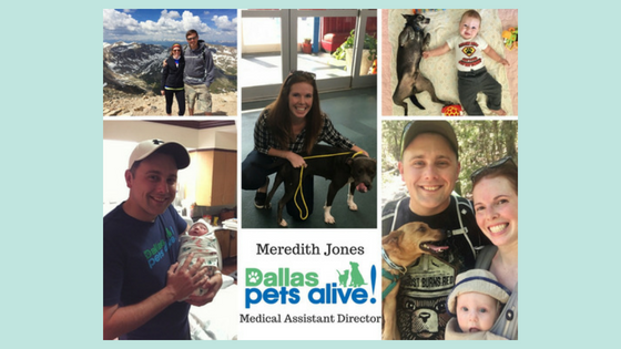 July 2018 DPA Leadership Spotlight