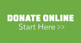 Donate Your Car Online - Start Here