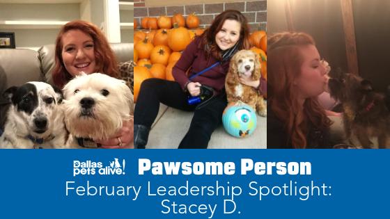DPA's Pawsome People: February 2019 Leadership Spotlight