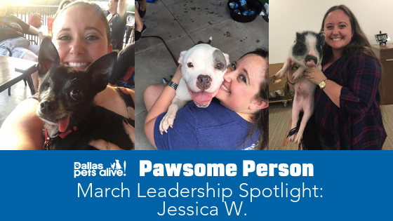 DPA's Pawsome People: March 2019 Leadership Spotlight