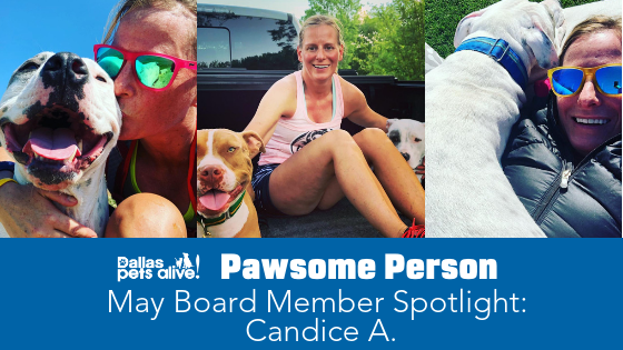 DPA's Pawsome People: May 2019 Board Member Spotlight Post 2