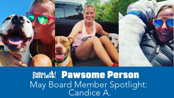 DPA's Pawsome People: May 2019 Board Member Spotlight Post 3