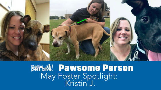 DPA's Pawsome People: May 2019 Foster Spotlight