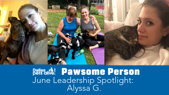 DPA's Pawsome People: June 2019 Leadership Spotlight
