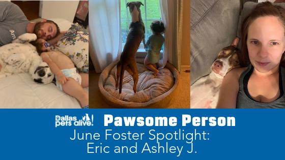 DPA's Pawsome People: June 2019 Foster Spotlight