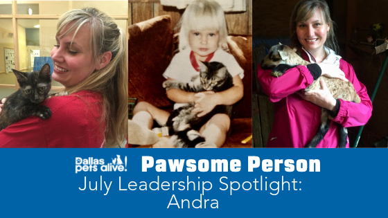 DPA's Pawsome People: July 2019 Leadership Spotlight
