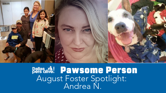 DPA's Pawsome People: August 2019 Foster Spotlight