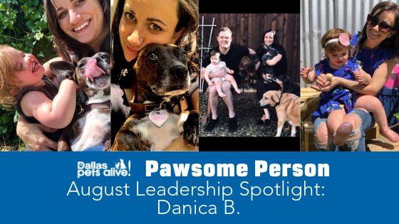 DPA's Pawsome People: August 2019 Leadership Spotlight