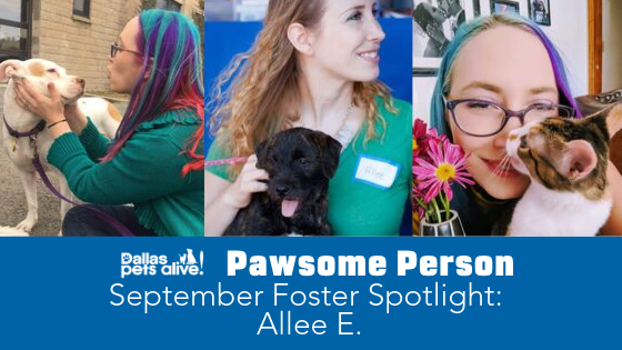 DPA's Pawsome People: September 2019 Foster Spotlight
