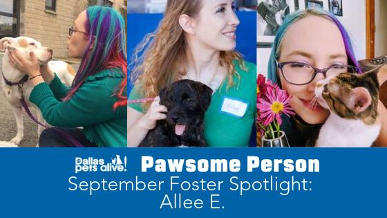 DPA's Pawsome People: September 2019 Foster Spotlight