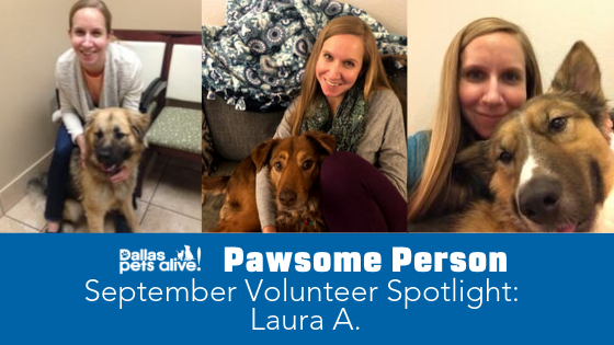 DPA's Pawsome People: September 2019 Volunteer Spotlight