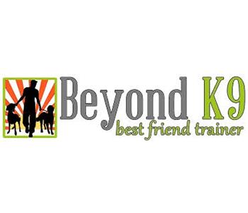 K-9 Direction Dog Training