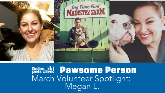 DPA's Pawsome People: March 2020 Volunteer Spotlight
