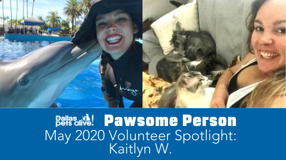DPA's Pawsome People: May 2020 Volunteer Spotlight