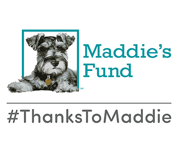 Maddie's Fund 25 Years of Lifesaving | Proud Partner