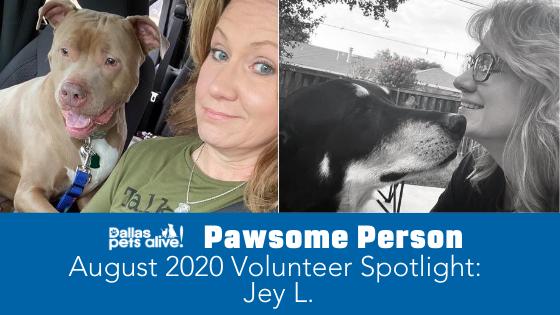 DPA's Pawsome People: August 2020 Volunteer Spotlight