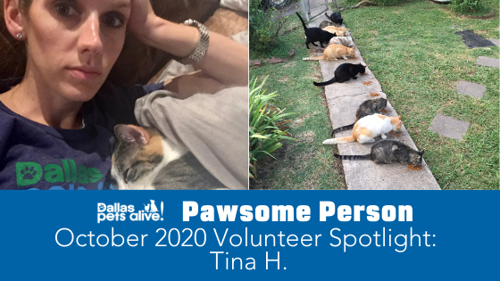 DPA's Pawsome People: October 2020 Volunteer Spotlight