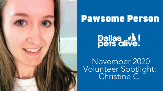 DPA's Pawsome People: November 2020 Volunteer Spotlight