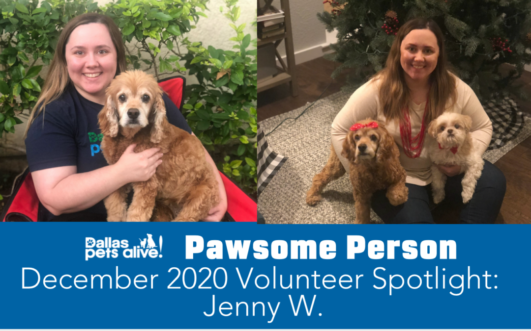 DPA's Pawsome People: December 2020 Volunteer Spotlight