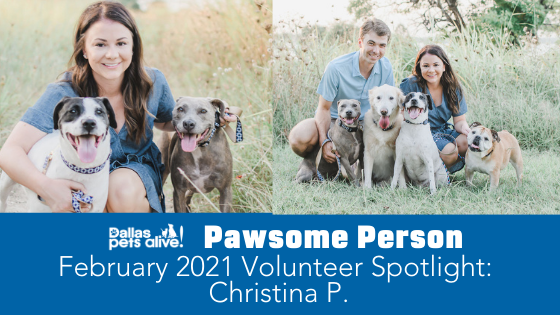 DPA's Pawsome People: February 2021 Volunteer Spotlight
