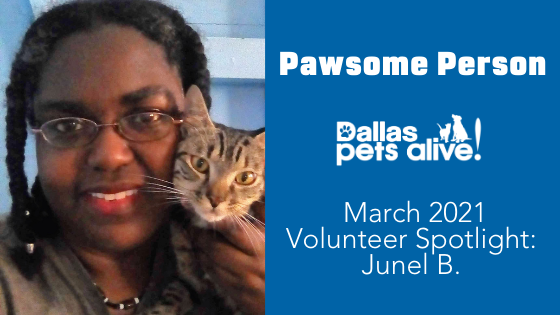 DPA's Pawsome People: March 2021 Volunteer Spotlight