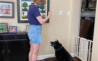 Woman standing training foster dog in living room