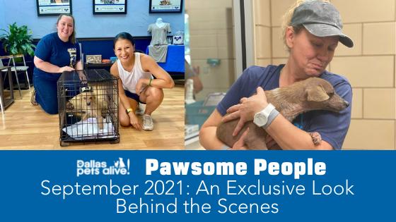 DPA's Pawsome People: September 2021 Volunteer Spotlight